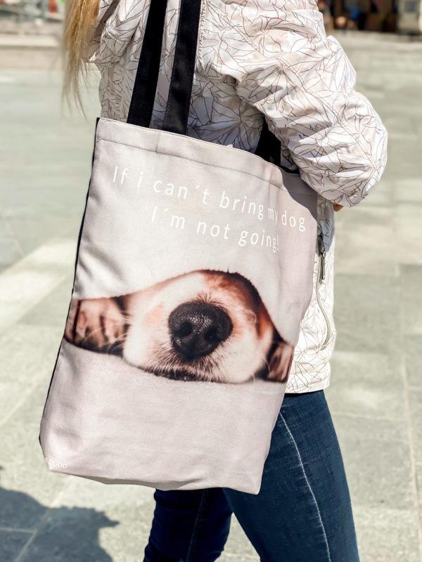 kandekott koera sõber