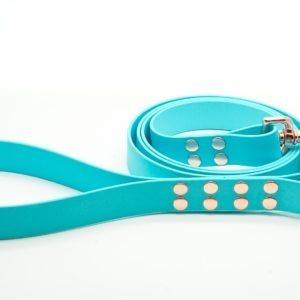 sinine koera jalutusrihm