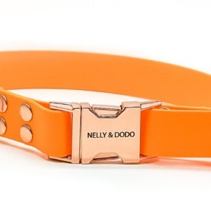 dog collar peach color j