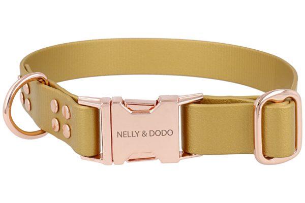 gold dog collar