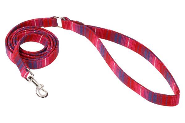 koera jalutusrihm hageri punane